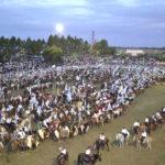 Se viene una nueva edición de la Fiesta Provincial del Caballo y destacan que será del mejor nivel