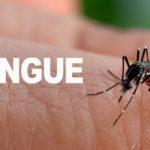 Desde las 19 hs de este viernes comienzan las fumigaciones contra el Dengue en la ciudad