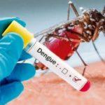 Último Momento: Confirmaron el primer caso de Dengue en Urdinarrain