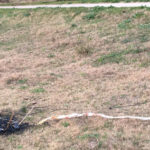 Insólito: Un barrilete provocó un cortocircuito y dejó parte de Urdinarrain sin luz