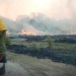 Incendio de grandes dimensiones en la zona de Arenas Blancas