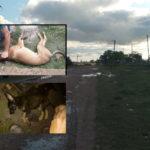 Denuncian el envenenamiento de perros en el barrio de la Policía en Urdinarrain