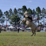 """ACEDU recordó que hoy sería""""La Fiesta Provincial del Caballo"""", emblema del sur entrerriano, de Urdinarrain al país"""