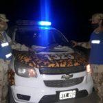 La Policía rural secuestró un arma y municiones en controles de prevención