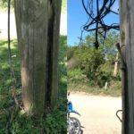 Tragedia en Gualeguaychú: identificaron al jóven que murió electrocutado